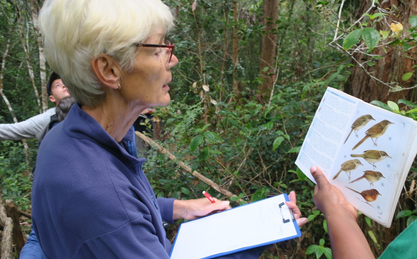 A senior volunteer abroad helps to count bird species during a census at our Conservation Project in Madagascar.